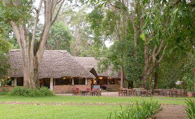 Arusha - Wayo Africa