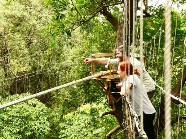 For questions or more information check our Treetop Walkway Facebook page or send an email to info@wayoafrica.com & Lake Manyara Treetop Walkway - Wayo Africa